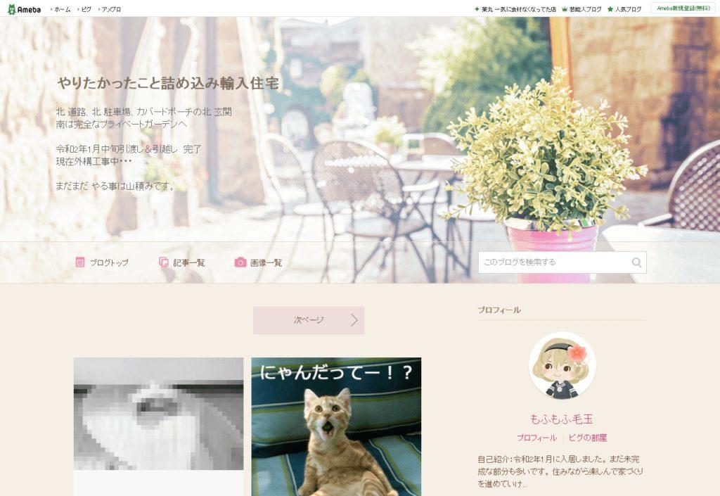 WEB内覧会ブログ(やりたかったこと詰め込み輸入住宅)