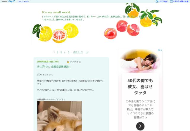 トヨタホームで建てた方のブログ(It's my small world)のTOPページ