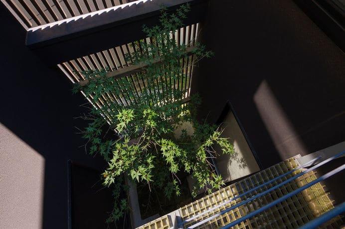 中庭のある家のルーフバルコニーから見下ろす中庭